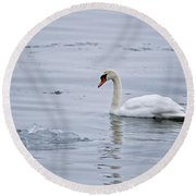 Mute Swan Pictures 131 Round Beach Towel