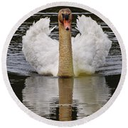 Mute Swan Pictures 141 Round Beach Towel