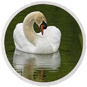 Mute Swan Pictures 191 Round Beach Towel