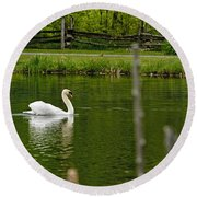 Mute Swan Pictures 195 Round Beach Towel