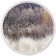 Muted Colors Of Winter Forest Round Beach Towel