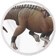 Muttaburrasaurus Dinosaur Round Beach Towel