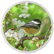 My Little Chickadee In The Cherry Tree Round Beach Towel by Jennie Marie Schell