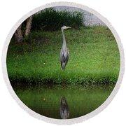 My Reflection - Heron Round Beach Towel