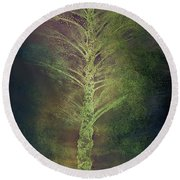Mysterious Tree In Moonlight Round Beach Towel