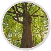 Mystical Forest Tree Round Beach Towel