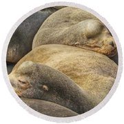 Nap Time 0009 Round Beach Towel