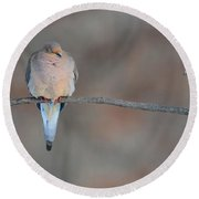 Napping Dove Round Beach Towel