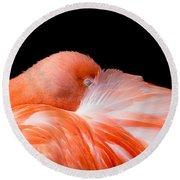 Napping Flamingo Round Beach Towel