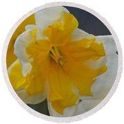 Narcissus 014-1 Round Beach Towel