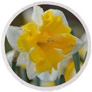 Narcissus 014-2 Round Beach Towel