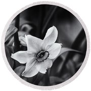 Narcissus In The Shadows Round Beach Towel