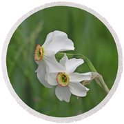 Narcissus Pair Round Beach Towel
