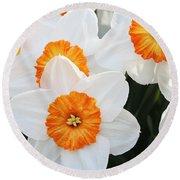 Narcissus Parkdene #2 Round Beach Towel
