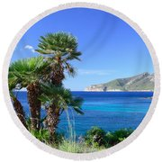 Native Fan Palms In Sant Elm Round Beach Towel