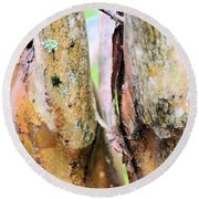 Natural Abstract Crepe Mertle Round Beach Towel