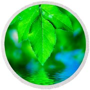 Natural Leaves Background Round Beach Towel