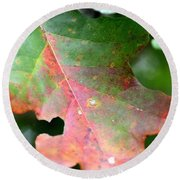Natural Oak Leaf Abstract Round Beach Towel