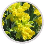 Naturalized Daffodils On The Farm Round Beach Towel