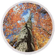 Nature In Art Round Beach Towel