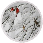 Nature's Christmas Ornaments Round Beach Towel