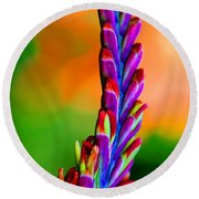Nature's Colors Round Beach Towel