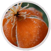 Natures Frost Round Beach Towel