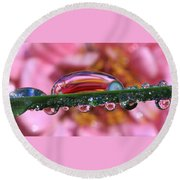 Nature's Ornaments Round Beach Towel
