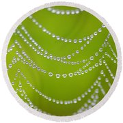 Natures Pearls  Round Beach Towel