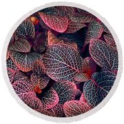 Nature's Rich Tapestry Round Beach Towel