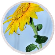 Nature's Sunshine Round Beach Towel