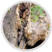 Nature's Wood Abstract Round Beach Towel