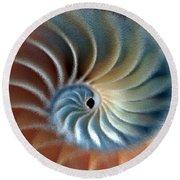 Nautilus Impression Round Beach Towel