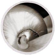 Nautilus Shell Sepia Round Beach Towel