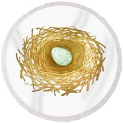 Nest And Egg Round Beach Towel