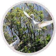Nesting Great Egrets Round Beach Towel