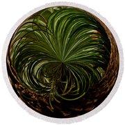 Nesting Pine Orb Round Beach Towel