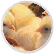 New Chicks Round Beach Towel