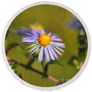 New England Asters Round Beach Towel