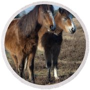 New Forest Ponies Round Beach Towel