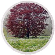 New Growth Round Beach Towel