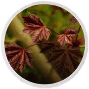 New Leaves For Napanee Round Beach Towel