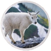 New Life In The High Country Round Beach Towel