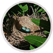 New Life - Robin's Nest Round Beach Towel