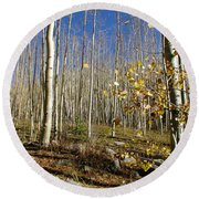 New Mexico Series -  Bare Autumn Round Beach Towel