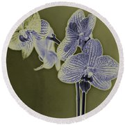 New Photographic Art Print For Sale Orchids 10 Round Beach Towel