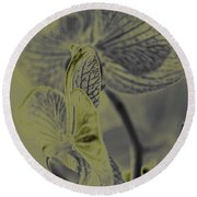 New Photographic Art Print For Sale Orchids 11 Round Beach Towel