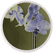 New Photographic Art Print For Sale Orchids 9 Round Beach Towel