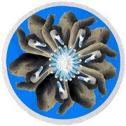 New Photographic Art Print For Sale Pop Art Swan Flower On Blue Round Beach Towel