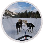 Riding Through The Colorado Snow On A Husky Pulled Sled Round Beach Towel